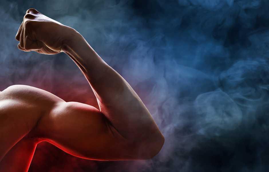 Ashwagandha forza muscolare